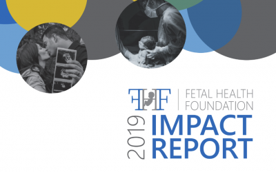 2019 Fetal Health Foundation Impact Report